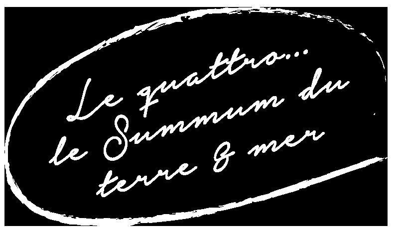Element graphique-Quattro summum terre mer